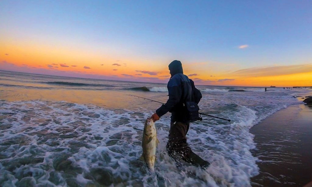 2018 9 New Gear For 18 Beyond Surf Bass Sunset Release Mike DeMarco
