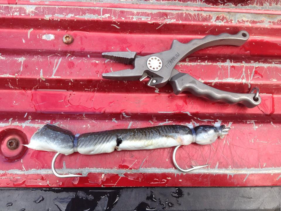 2017 10 Big Bad Bluefish Tools
