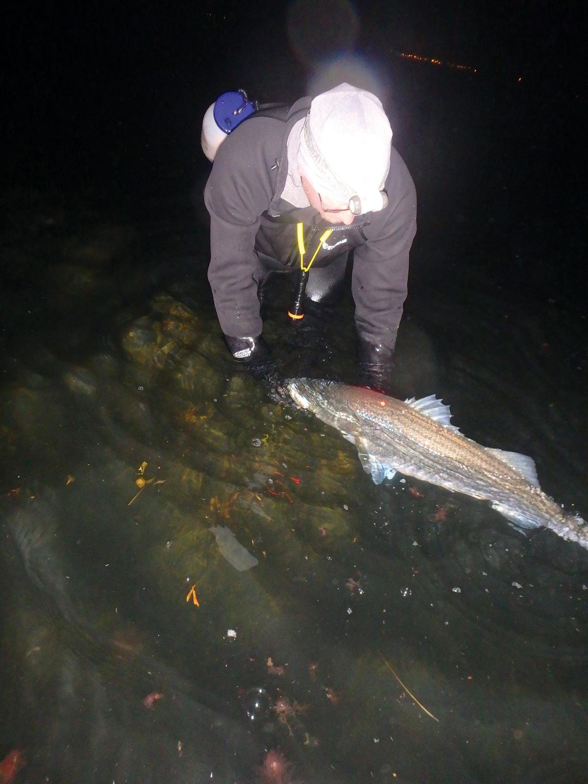 2017 11 Fishing Rhodys Rocks Fish 2