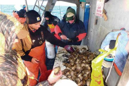 2017 2 Offshore Pork Choppin Clams