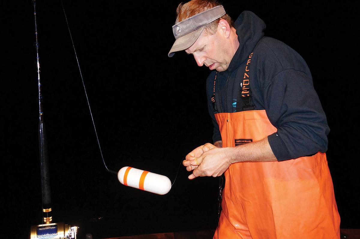 Sharpen Your Sharking Skills Rubber Bands