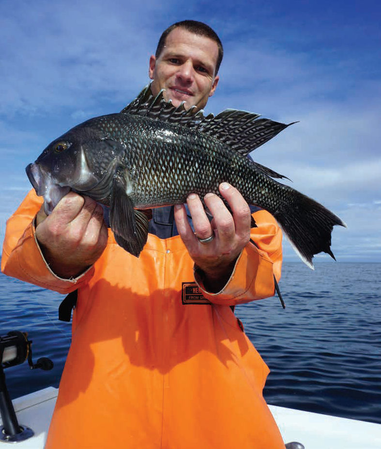 2017 9 Counting Sea Bass By Hook Line John