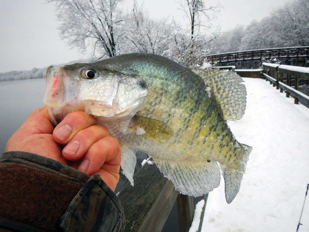 2018 2 Four Spots Winter Crappies Nat