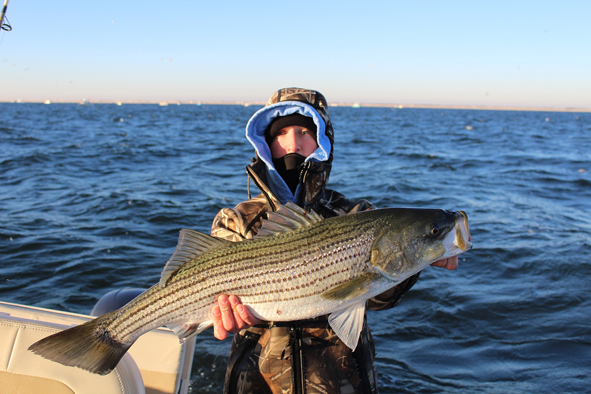 2018 3 Start To Finish Stripers Fish