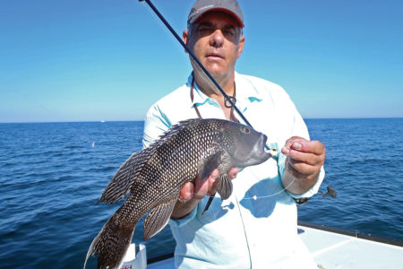 2018 4 A Changing Fishery Catch