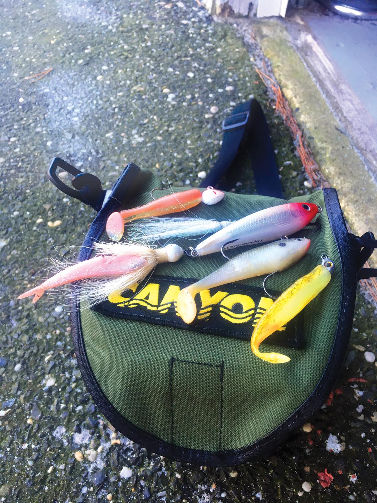 2018 4 Get Schooled Backwater Bridge Bass ARSENAL