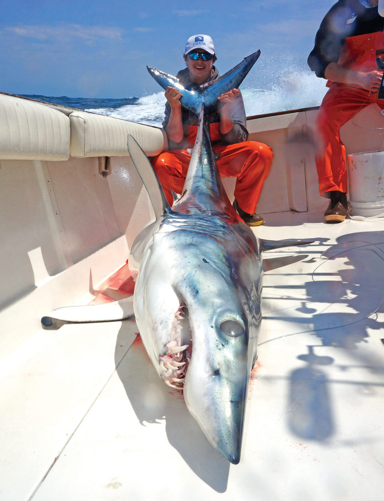 2017 10 New Shark Regulations Hutchinson