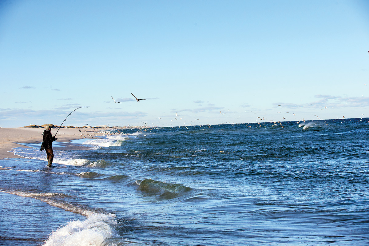 2017 11 Fall Blitz Fishinng At Ibsp Fishing