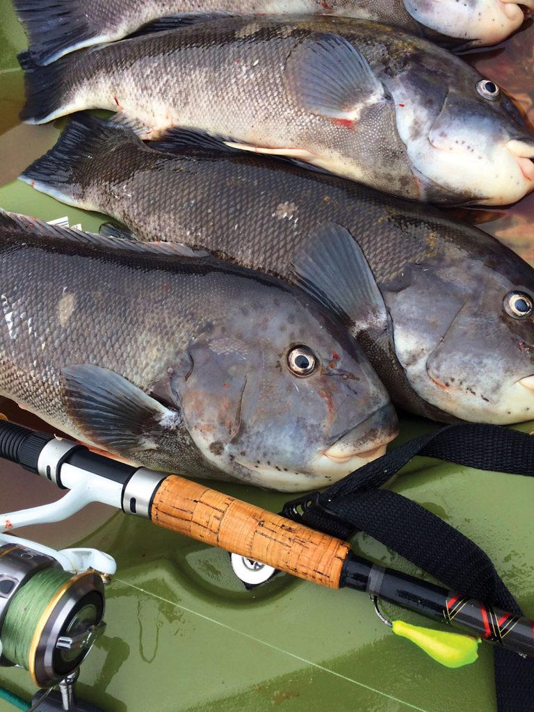 2018 4 Springs Soft Bait Secrets Fishes