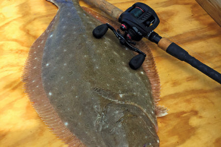 2018 6 Targeting A Doormat Fish