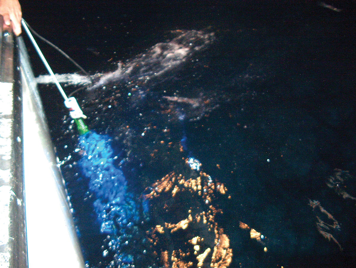 2018 7 Led Lighting Upgrades Hydro Glow & Squid