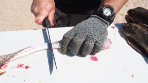 2018 8 Searobbins Trash Fish No More Fillet7