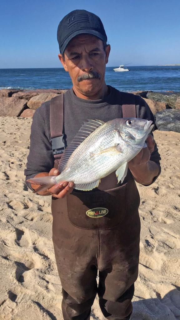 2018 9 A Surf Fishing Alternative Catch