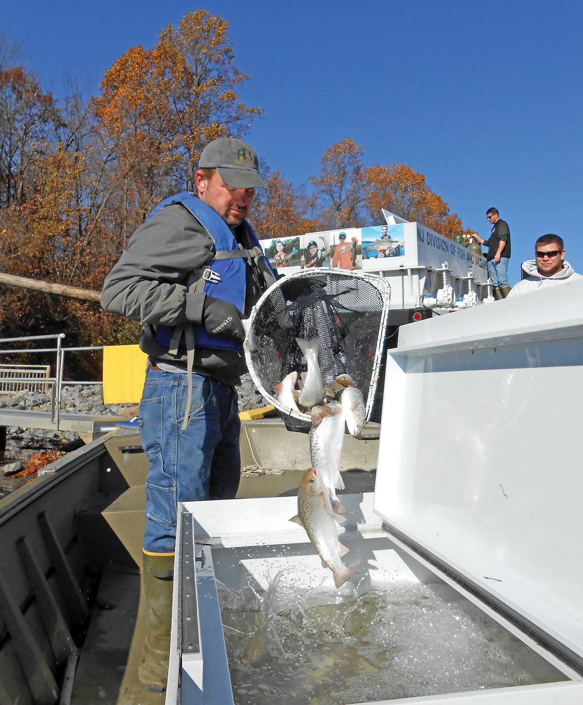 2019 1 Fishing For Nj Salmon STOCKING