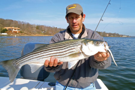 2019 4 Decoding Spring Stripers Show Off
