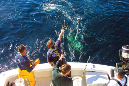 three men working together to bring a big fish on board