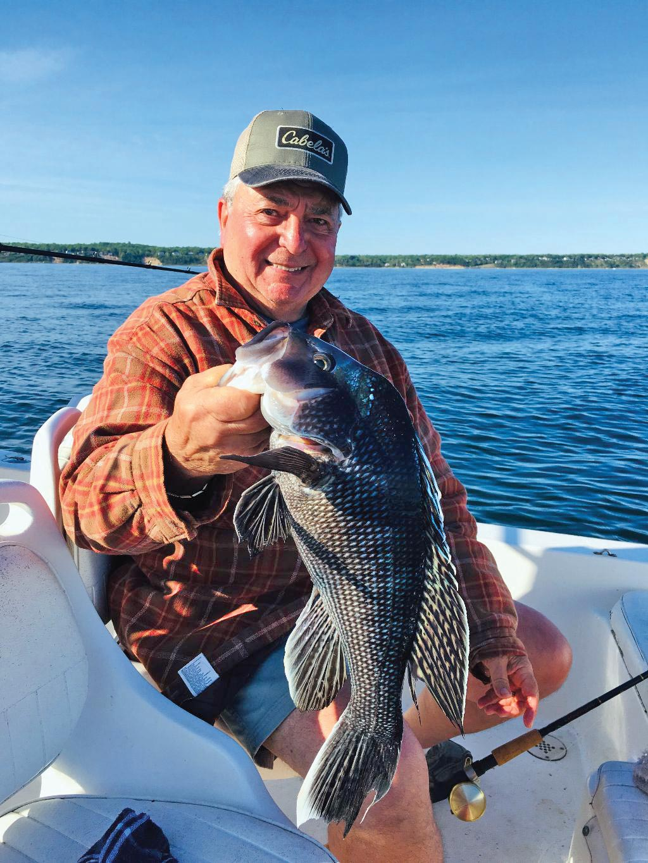 Man holding up a big sea bass