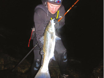 A somewhat blurry photo of the night's catch
