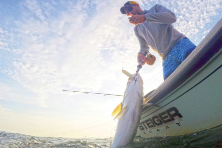 Where there is one monster like this one landed by Capt. Mike Roy, there are likely more
