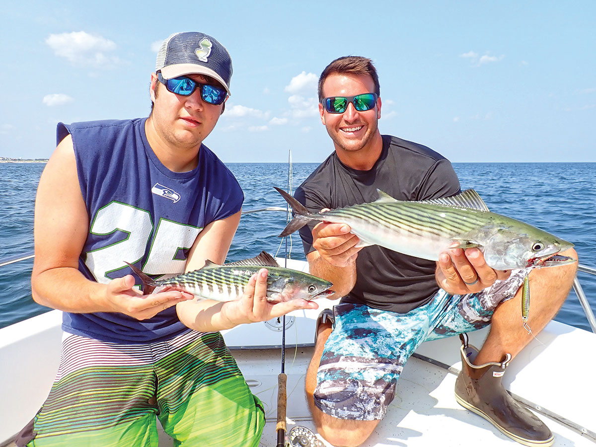 Showing off bonito fishes from baitfish