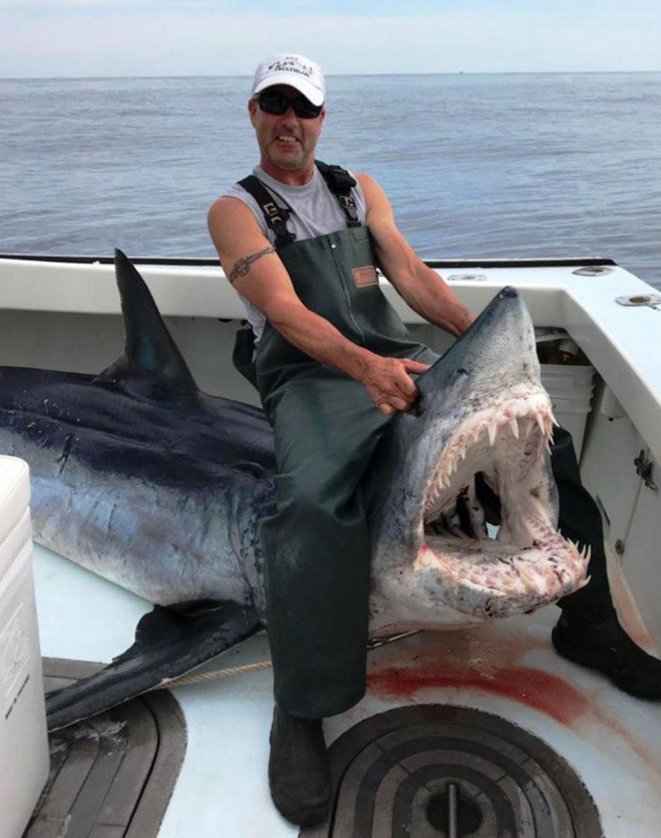 Giant makos like this 875 pounder are sometimes found prowling the Edge.