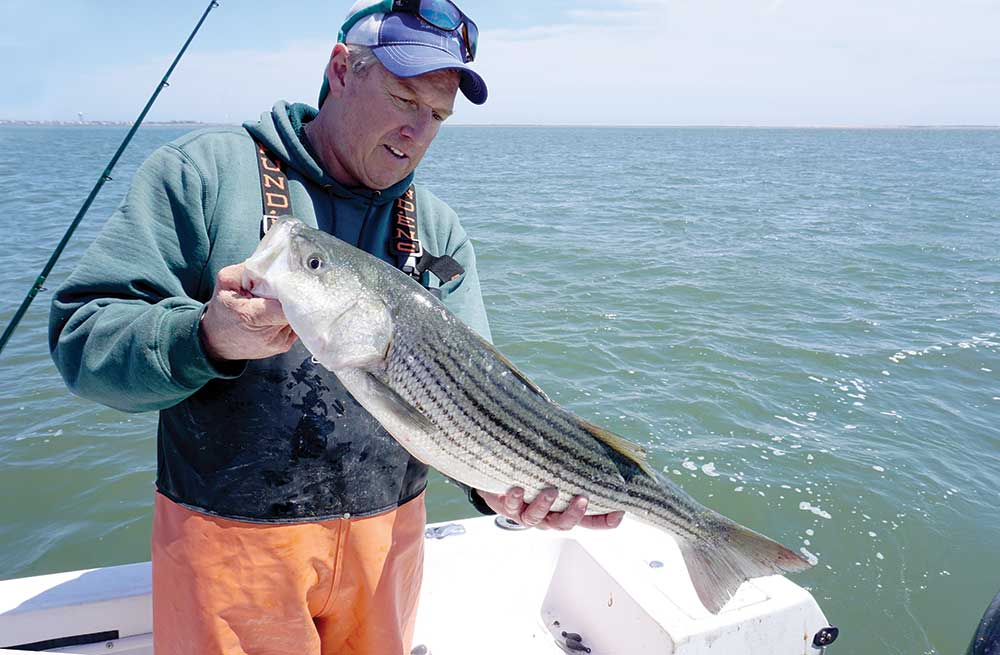 A mild winter should produce good action with slot fish