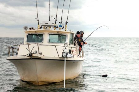 pring Blackfish Success
