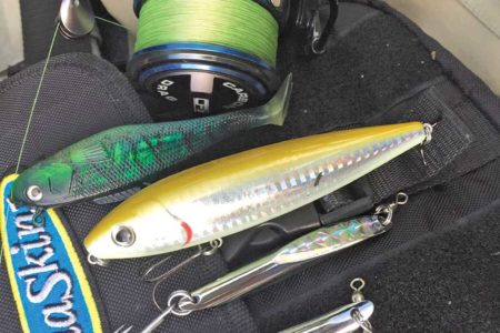 Scale down your choices of lure sizes