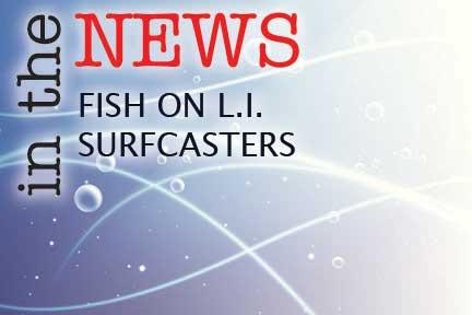 News Fish