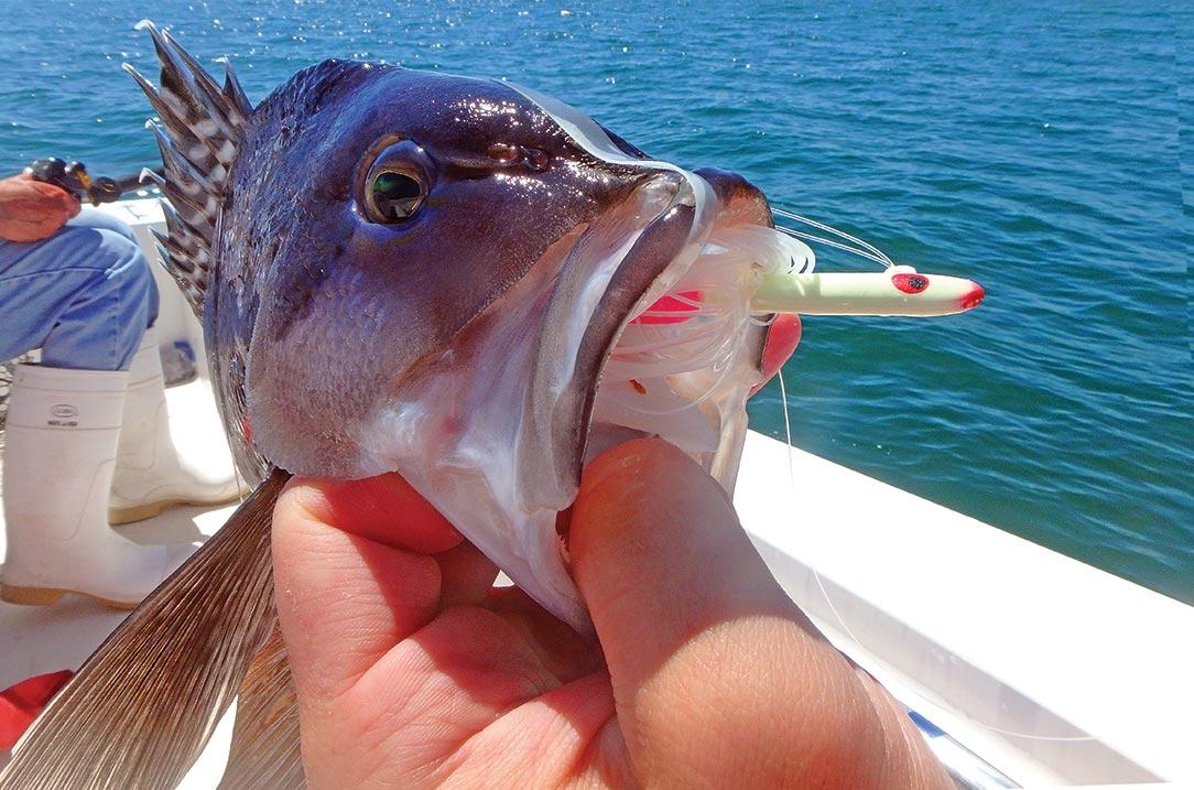 Teasers for bottom fishing
