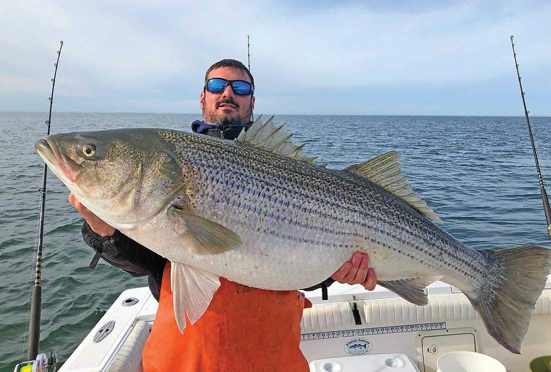 Some of the very largest stripers boated by the Tyman team each season are January and February cows caught off of Virginia while slow-trolling eels.