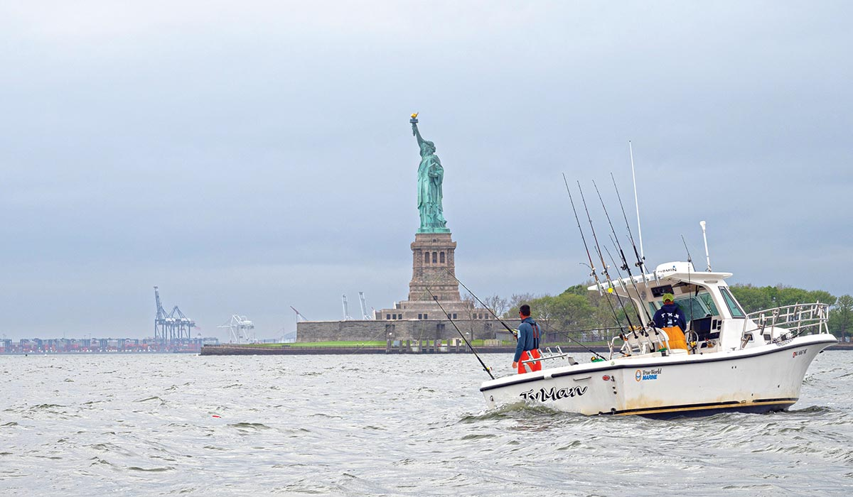 The view from Fin Chasers towards Lady Liberty,