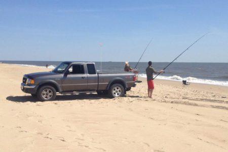 Delaware surf