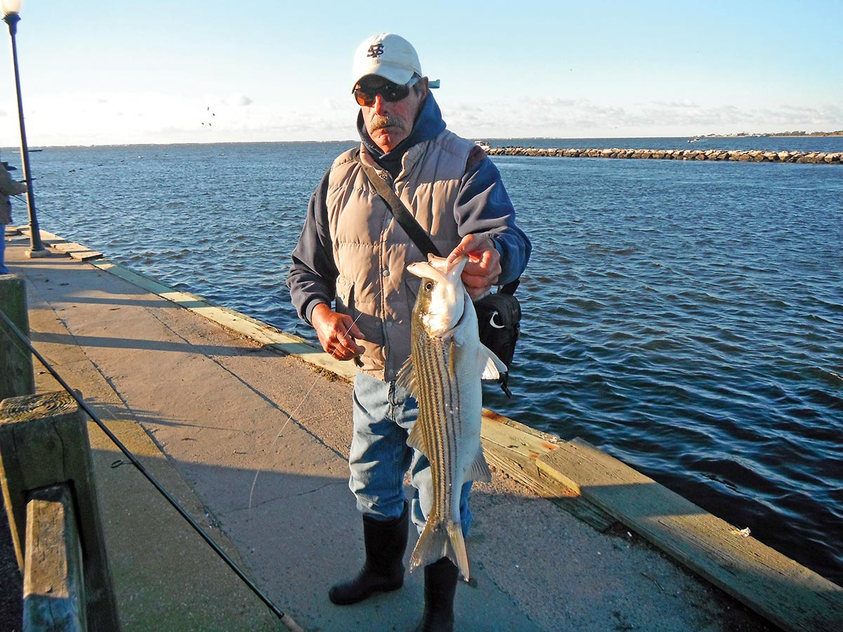 Some very good striper action can be found around mainland docks