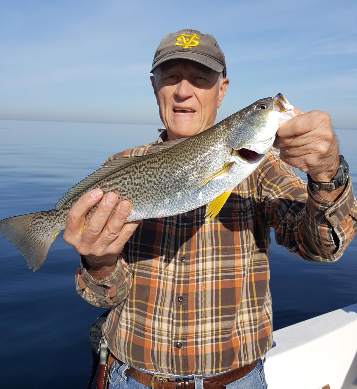 There are signs that weakfish are staging a comeback, and I caught this one while fishing for porgies in Smithtown Bay.
