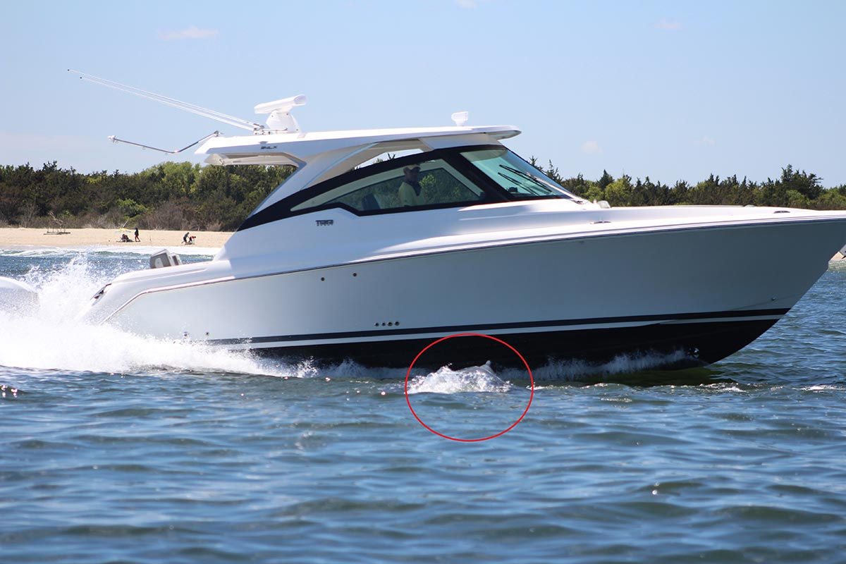 This boater didn't notice the whale until it was directly under his boat. Photo by Danielle Brown