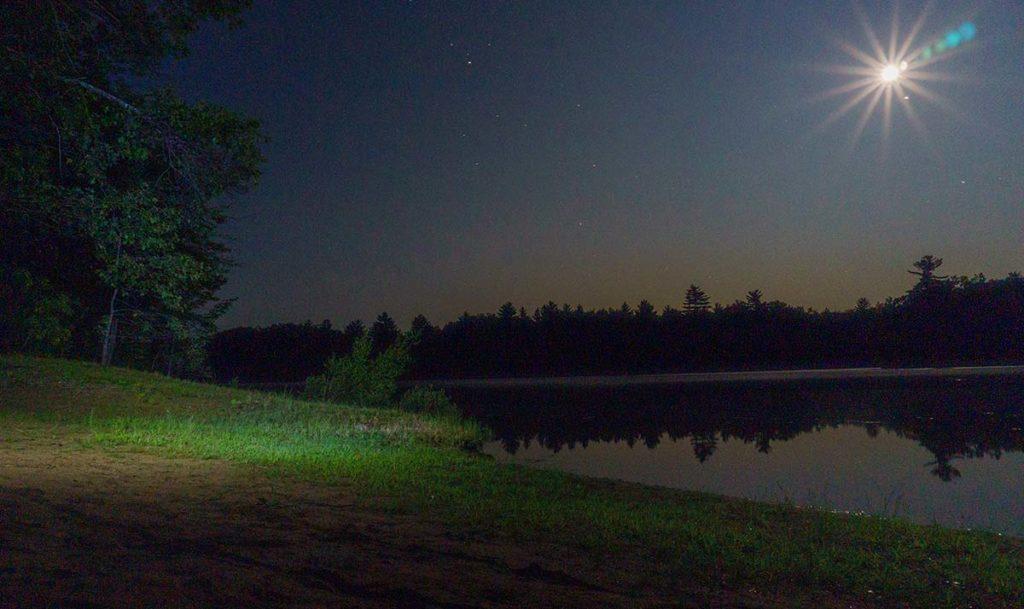 Midnight Lunkers Night Bass
