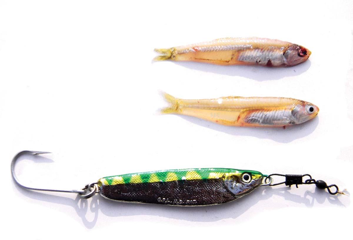 Crippled herring jigs