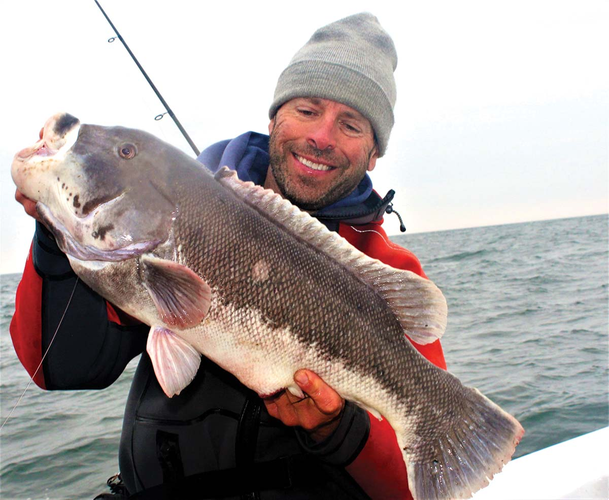 Very large blackfish