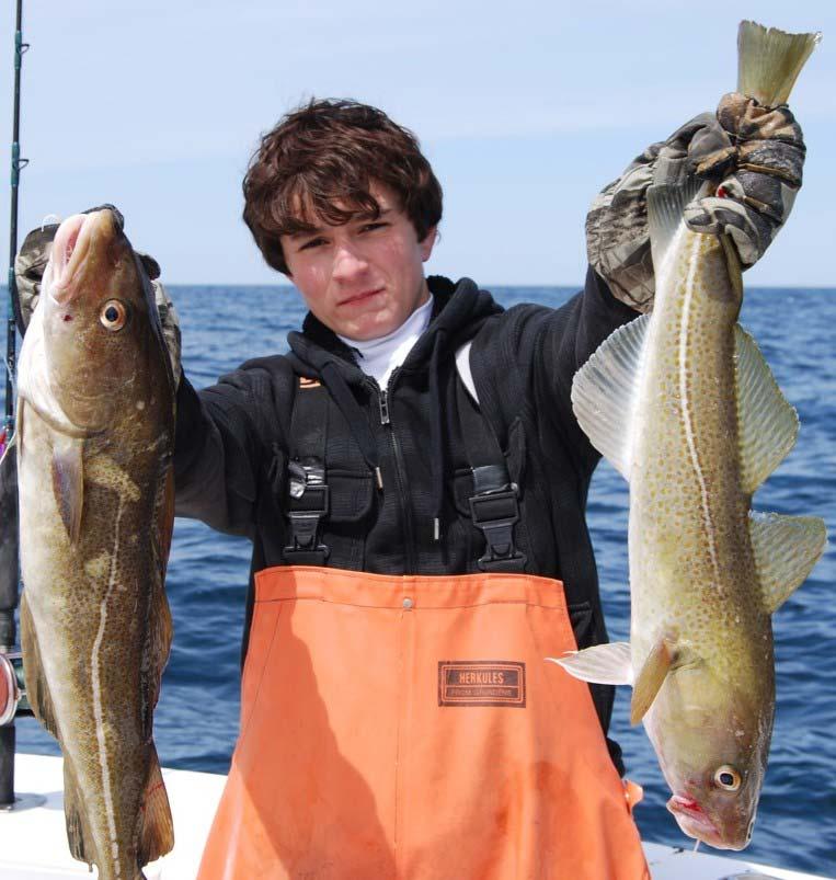 Market cod are fun to catch plus make a great table fare!
