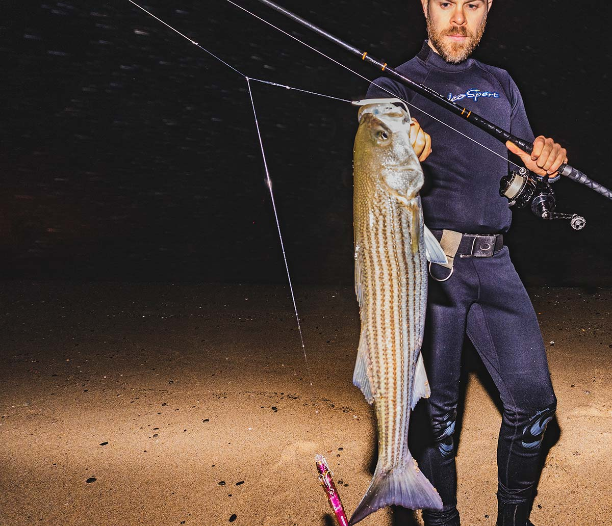 Not just a small fish tool, the teaser is perhaps the surfcaster's best choice when it comes to targeting striped bass.