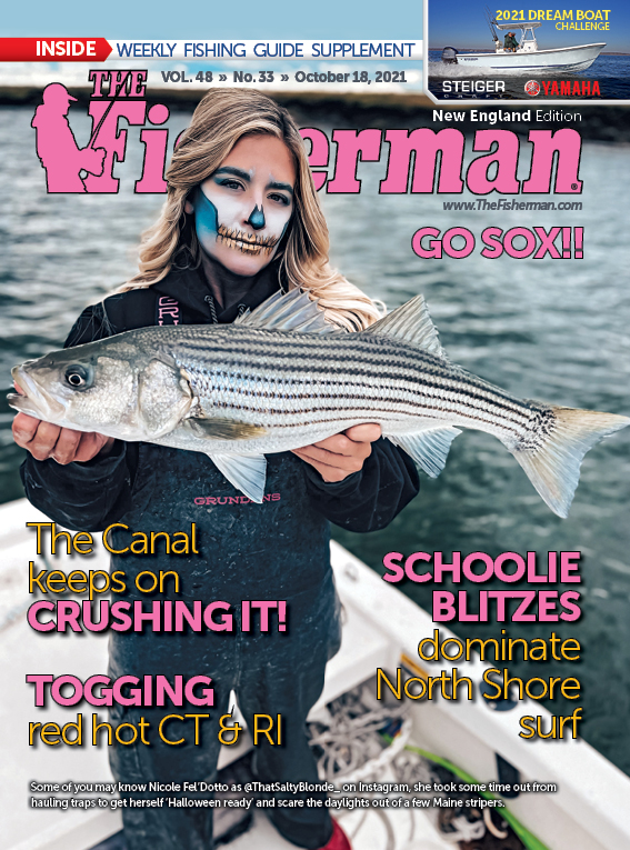 New England Current Issue